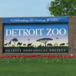 Detroit Zoo's new marketing campaign highlights wildlife conservation, sustainability efforts