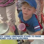 Macomb Township boy sells lemonade to raise money for toys for kids with cancer