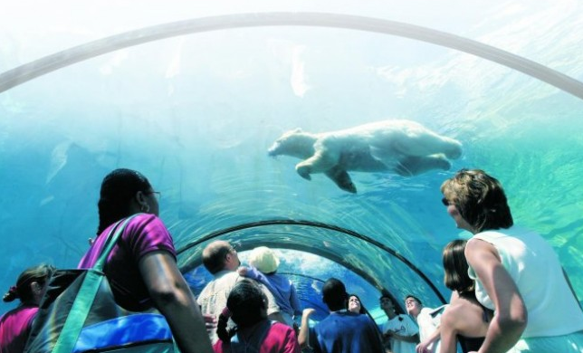 Detroit Zoo's Arctic Ring of Life